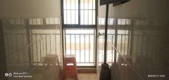 长年出租1室1厅1卫50m²单身公寓包物业拎