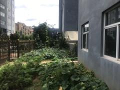 (楚雄市)珑曦苑4室150m²一楼带150平花园两车位