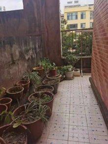 (楚雄市)城市花园3室2厅2卫二楼有露台